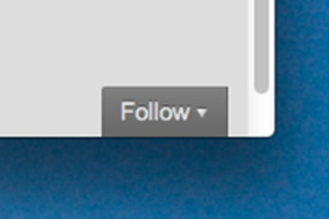 WordPress Follow button