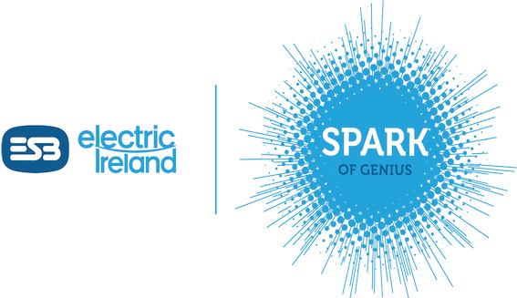 ESB Electric Ireland Spark of Genius