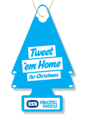 ESB Electric Ireland's Tweet 'em Home