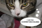 Lolcat against SOPA