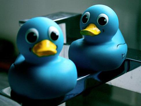Twitter ducks