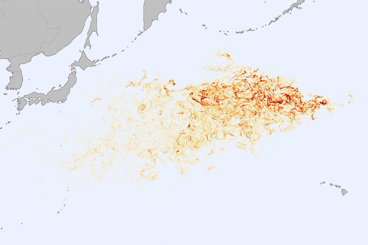 Debris field model of the Japanese tsunami