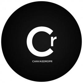 CanvasDropr logo