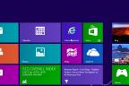 Internet Explorer on Windows 8