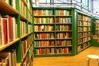 Library bookshelf