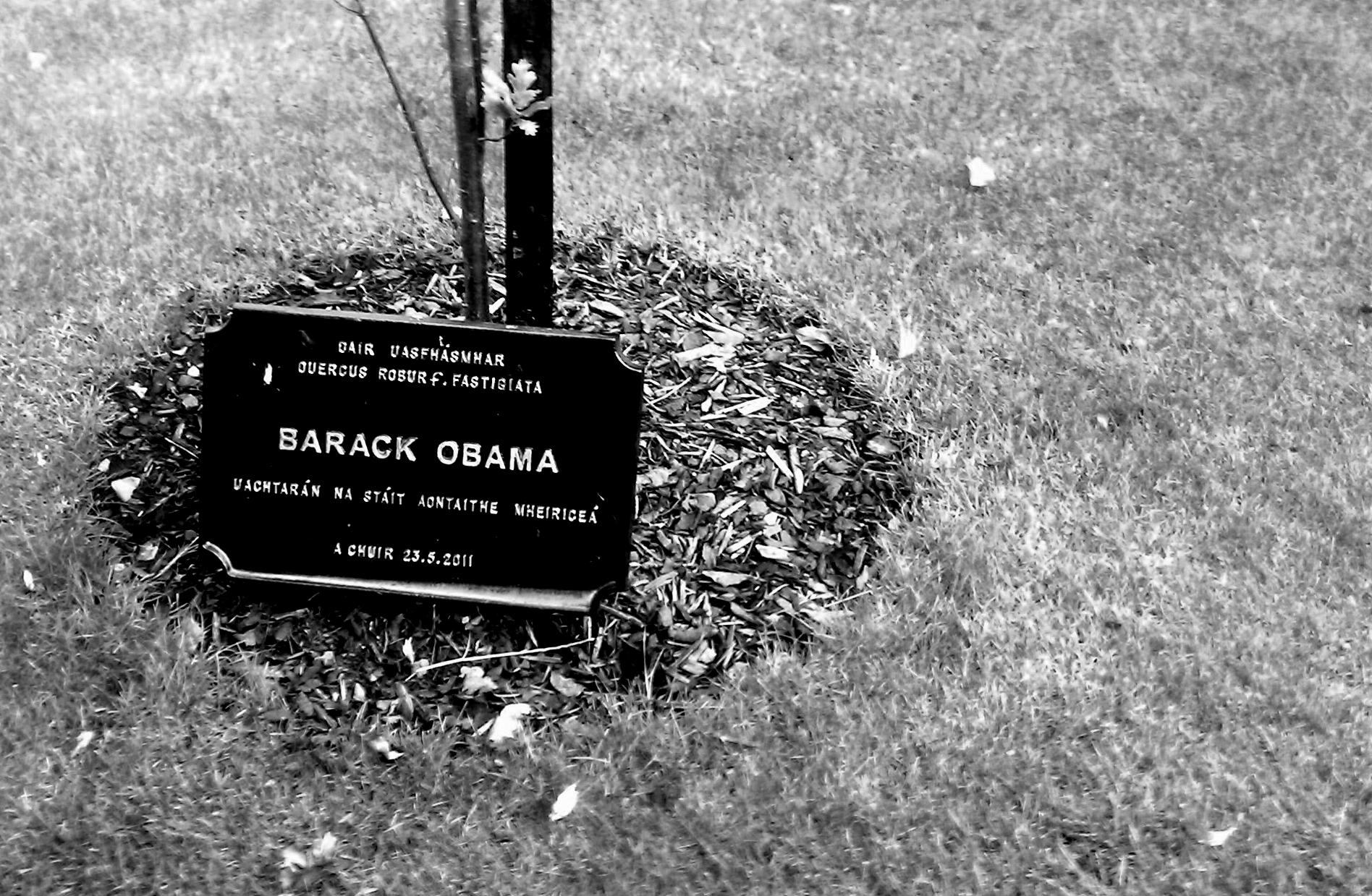 Barack Obama - Irish