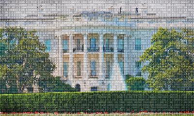 white house ai
