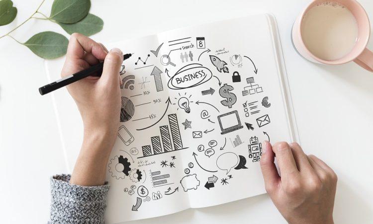 business plan, business model