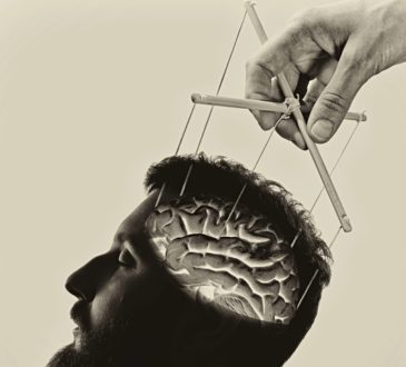 puppet brain